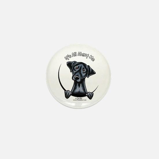 Black Lab IAAM Mini Button