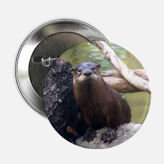 River Otter Button