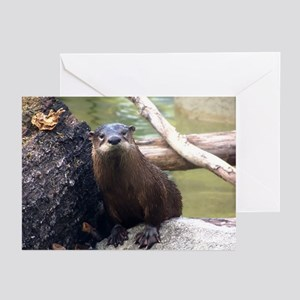 River Otter Greeting Cards (Pk of 10)