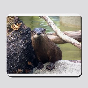 River Otter Mousepad
