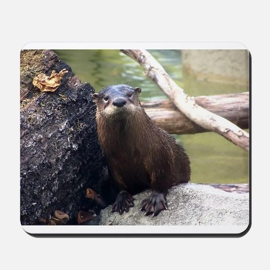 River Otter Mousepad