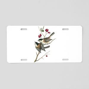 Black-capped Chickadee Aluminum License Plate