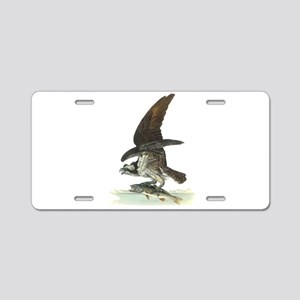 Osprey Bird Aluminum License Plate