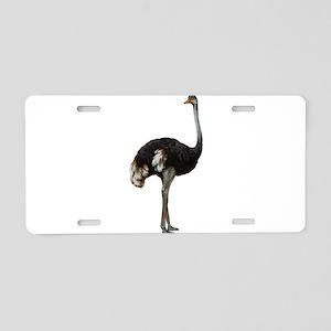 Ostrich Bird Aluminum License Plate