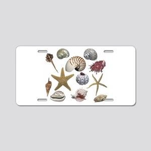 Shells Aluminum License Plate