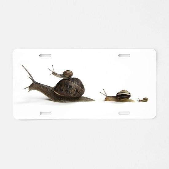Snail Family Aluminum License Plate