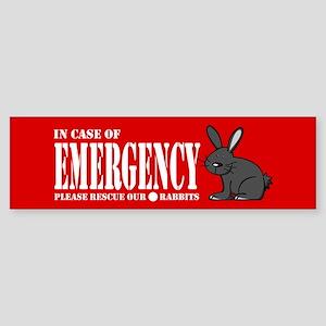 Rabbit Rescue Bumper Sticker