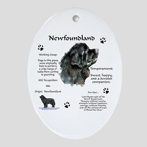 Newf 1 Oval Ornament