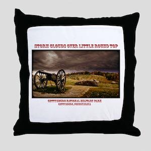 101714-313-L Throw Pillow