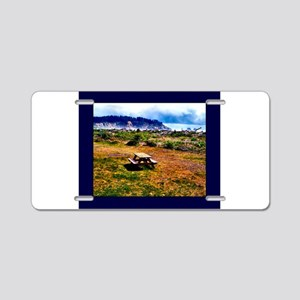 Picnic At The Beach Aluminum License Plate