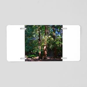 Cornwall Park Trees Aluminum License Plate