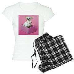 Birthday Chihuahua Pajamas