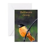 Baltimore Oriole Greeting Cards (Pk of 10)