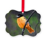 Baltimore Oriole Picture Ornament
