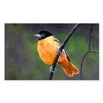 Baltimore Oriole Sticker (Rectangle 50 pk)
