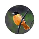 Baltimore Oriole Button