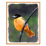 Baltimore Oriole Small Poster