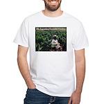 Legendary Cannabis Cowboy T-Shirt