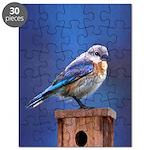 Bluebird (Female) Puzzle