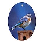 Bluebird (Female) Oval Ornament