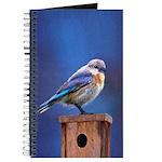 Bluebird (Female) Journal
