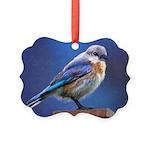 Bluebird (Female) Picture Ornament