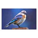 Bluebird (Female) Sticker (Rectangle)