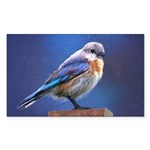 Bluebird (Female) Sticker (Rectangle 50 pk)