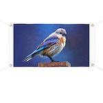 Bluebird (Female) Banner
