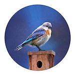 Bluebird (Female) Round Car Magnet