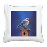 Bluebird (Female) Square Canvas Pillow