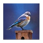 Bluebird (Female) Tile Coaster
