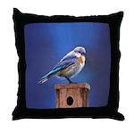 Bluebird (Female) Throw Pillow