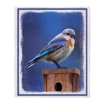 Bluebird (Female) Throw Blanket