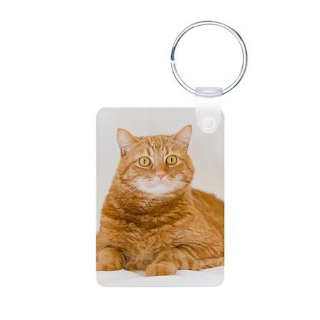 Orange Cat Aluminum Photo Keychain