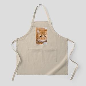 Orange Cat Apron