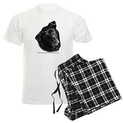 Corvis, Black Lab Mix Pajamas