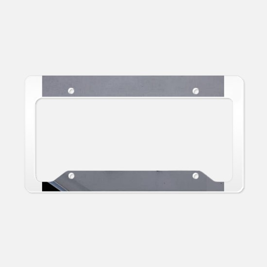 Dodge Dart License Plate Holder