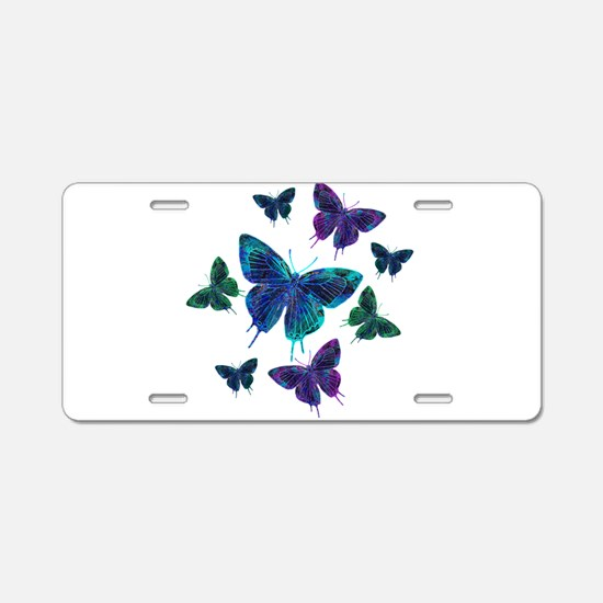 Amusement Aluminum License Plate