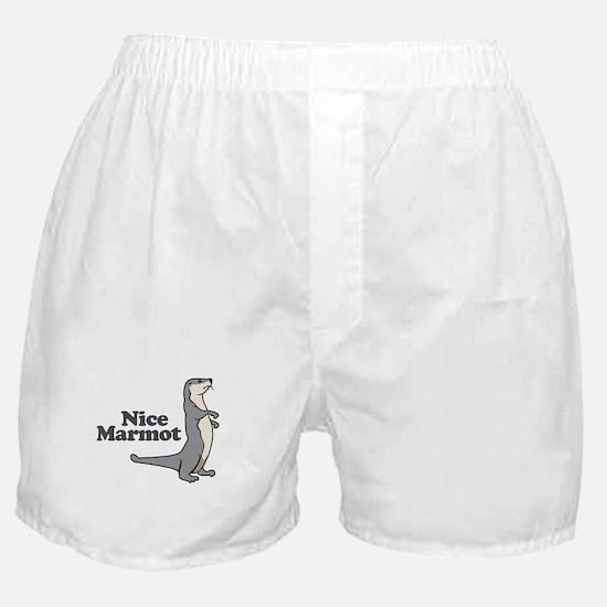 Nice Marmot Boxer Shorts