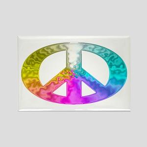 Peace Rainbow Splash Rectangle Magnet