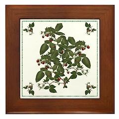 Raspberries Framed Tile