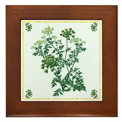 Dill Framed Tile