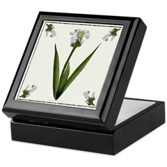 White Lily Keepsake Box