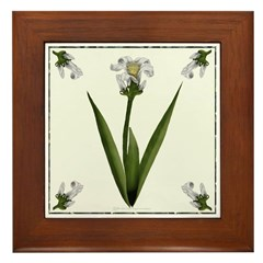White Lily Framed Tile