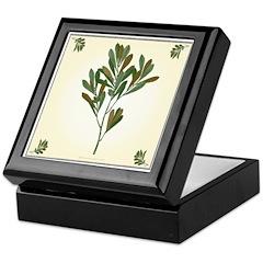 Branch Keepsake Box