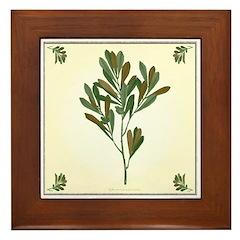 Branch Framed Tile