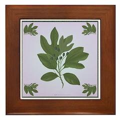 Tree Branch Framed Tile