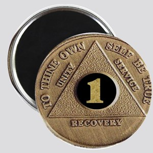 1 YEAR COIN Magnet