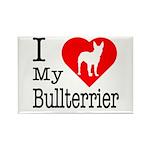 I Love My Bullterrier Rectangle Magnet